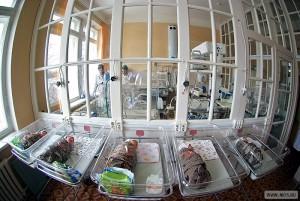 На территории ЮАО в конце марта возобновит работу роддом при ГКБ им. Юдина
