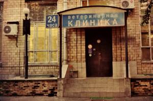 Ветеринарная клиника в Даниловском районе