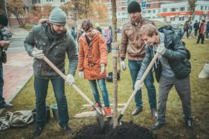В Даниловском районе проведут массовое озеленение