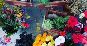 Владелица цветочной лавки на Даниловском рынке рассказала, какие цветы можно подарить учителю к 1 сентября
