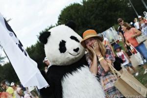 Парад панд WWF