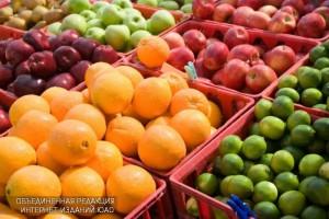 В даниловском районе прошла выставка, посвященная вегетарианству