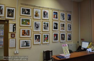 Фотовыставка «Современная обскура» в библиотеке №163