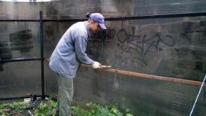 Добровольцы помогают очистить Дом Павлова