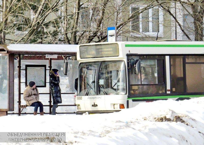 В день выборов наземный транспорт района будет работать по расписанию будней