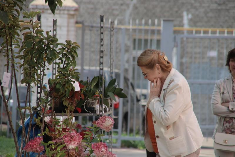 На выборах мэра Москвы