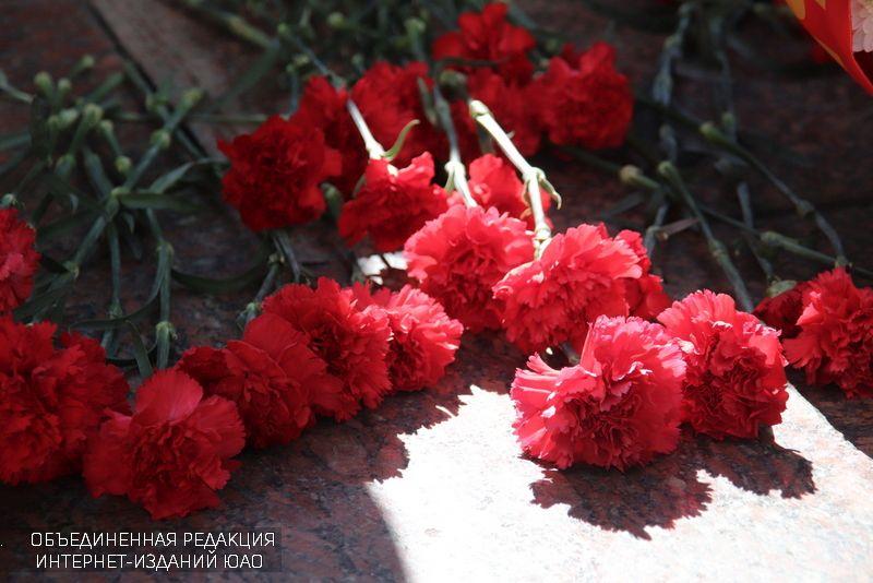 День памяти и скорби, память, цветы, гвоздики, война