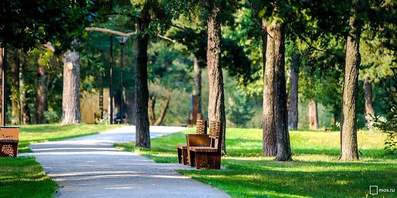 парк зелень озеленение мос ру