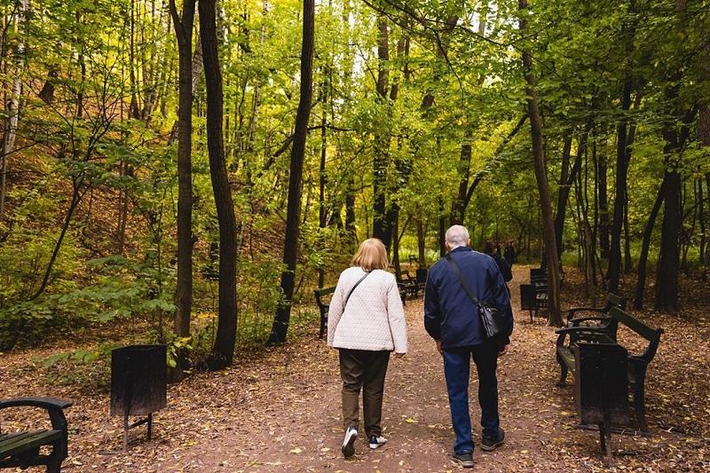 парк горького некучный сад